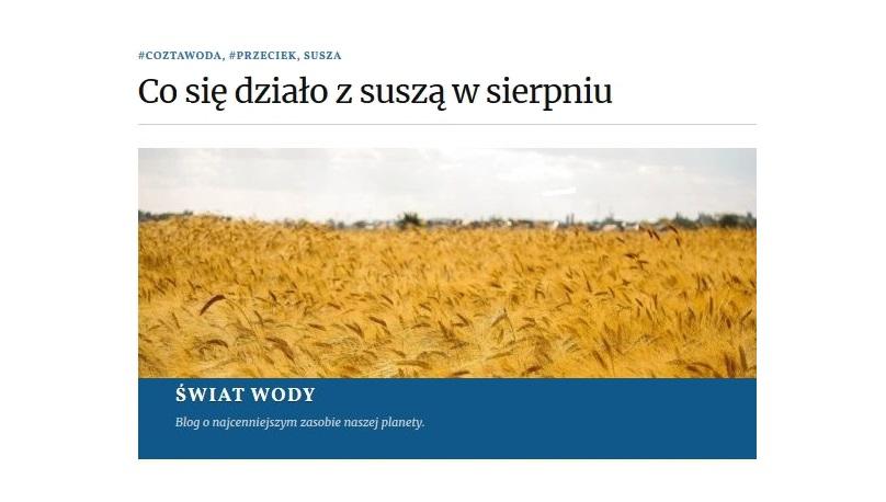 raport sierpień esusza.pl
